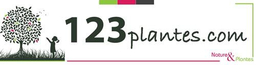 Logo www.123plantes.com